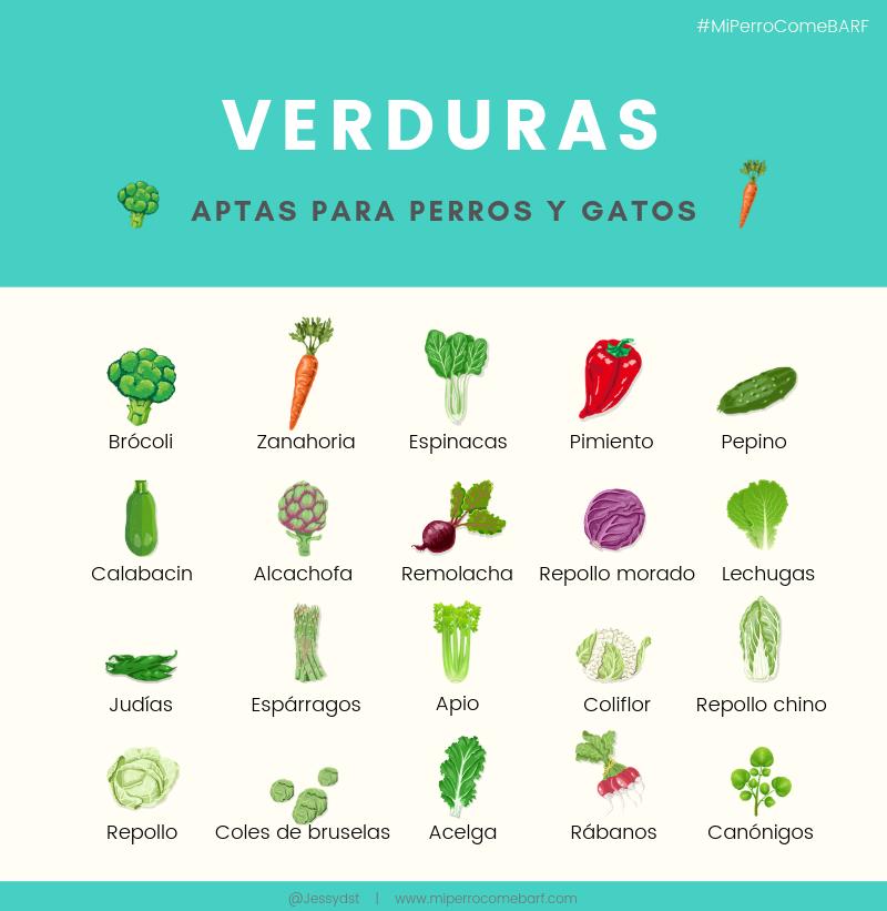 verduras aptas para perros y gatos