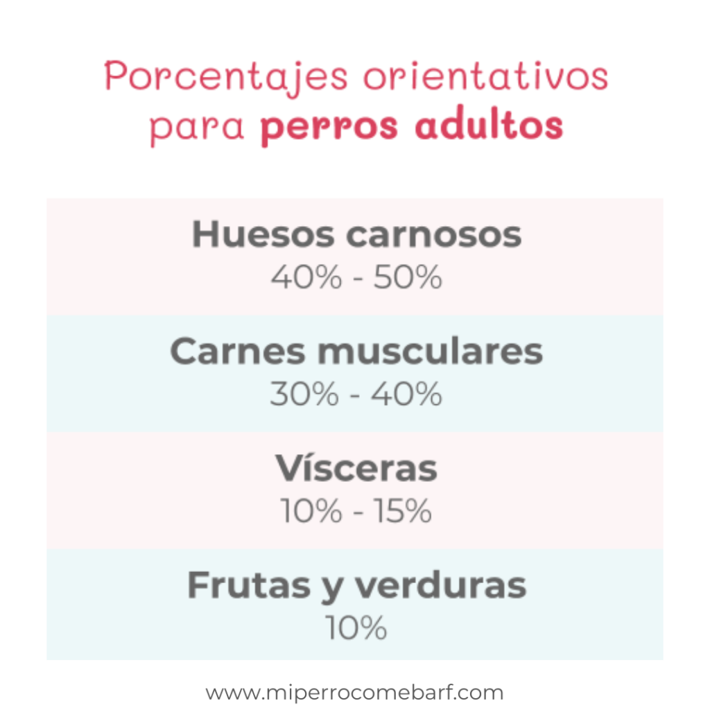 Porcentajes dieta BARF perros adultos