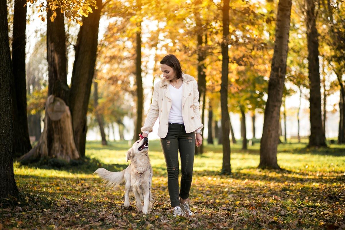 como educar a tu perro en positivo con base cientifica