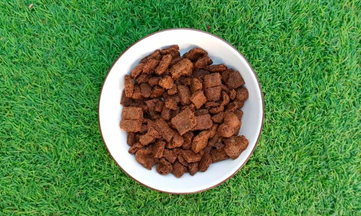 snack crujiente de higado para perros y gatos